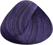GLC7 Viola Passione